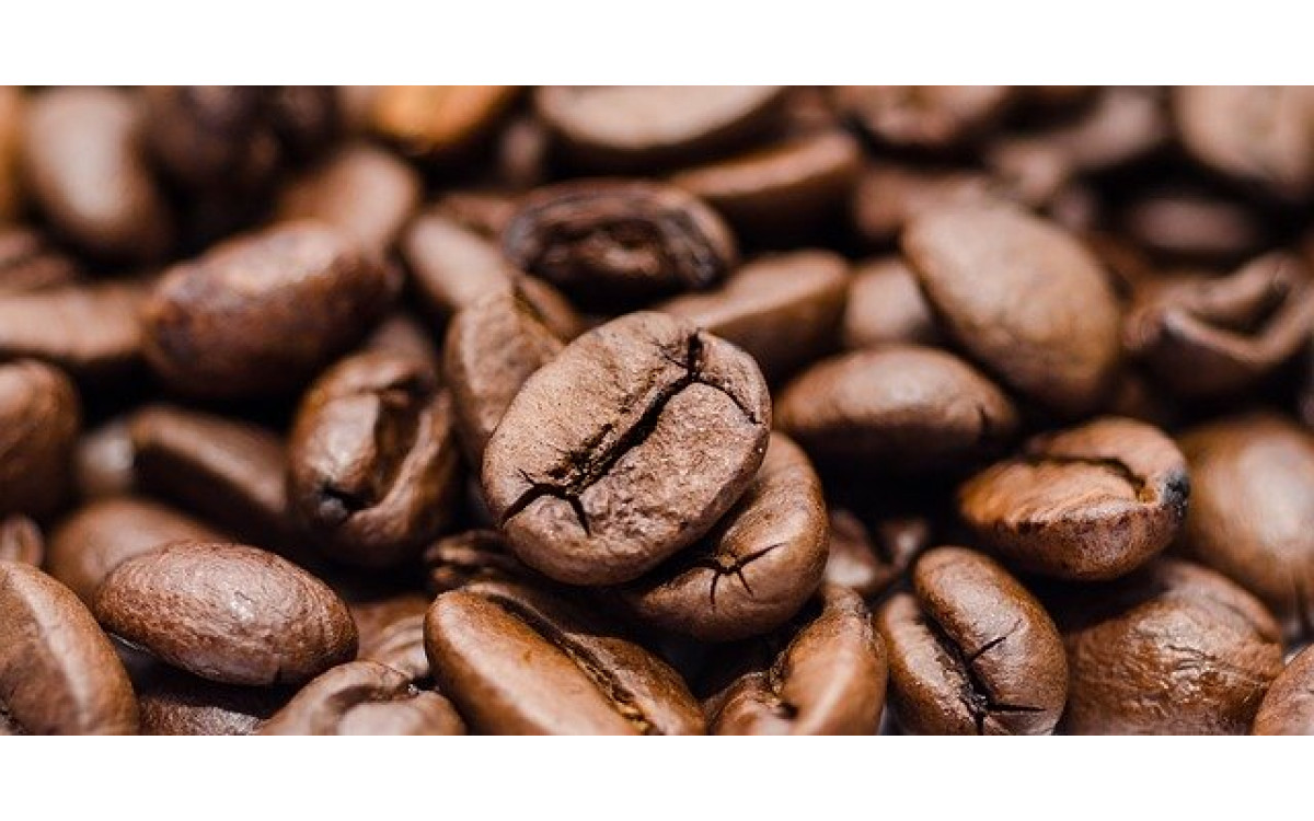The Comprehensive Guide on How to Buy The Best Coffee Beans